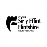 image Flintshire County Council logo